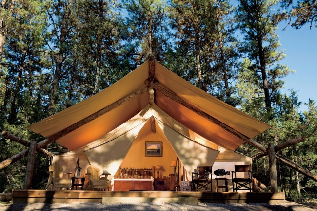 paws up glamping tent