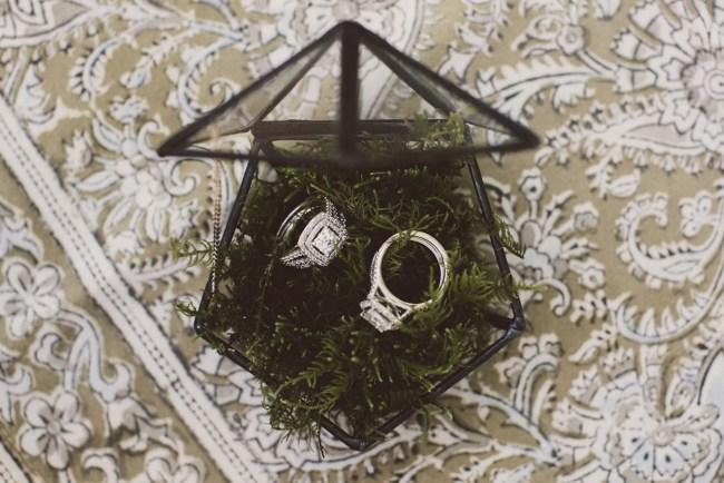 rings in moss