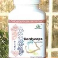 Distinctive Benefits of Cordyceps Plus