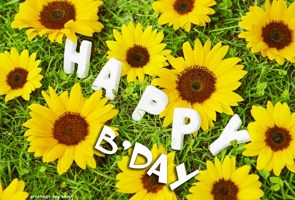 Happy Bday Wallpaper With Quotes Birthday Daily Ecards Pictures Amp Animated Gifs