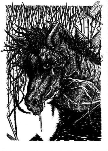 waterhorses