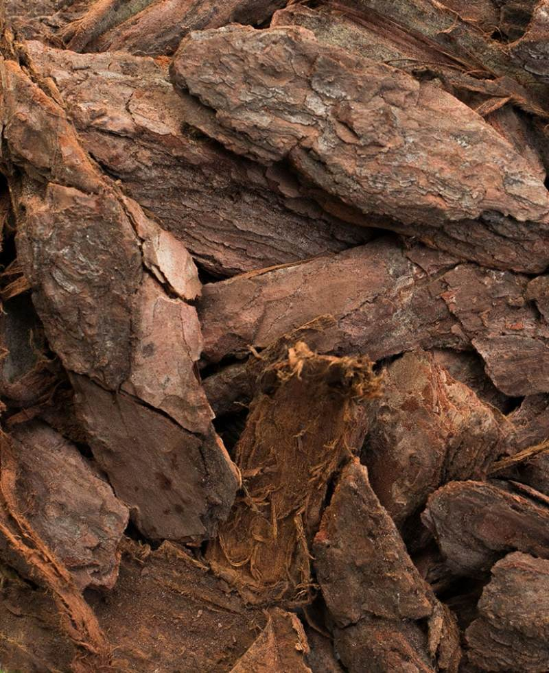 Large Of Pine Bark Nuggets