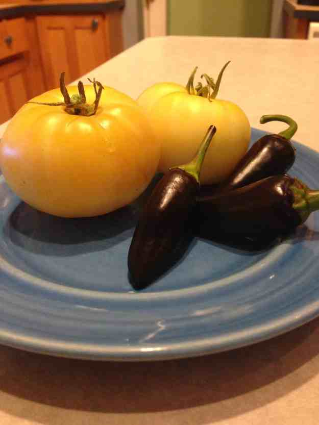 Black Jalapeño and White Tomato from the Garden- Making of Oreo Salsa
