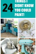 24 THINGS I DIDNT KNOW YOU COULD PAINT