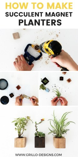 Wonderful Succulents 2f Grillo Designs How To Make A Magnetic Fishing Pole How To Make A Magnetic Board How To Make Diy Magnet Planters