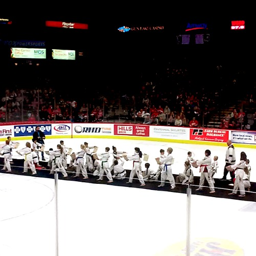 Parent\u0027s Guide to the Grand Rapids Griffins - 7 Tips for the Best