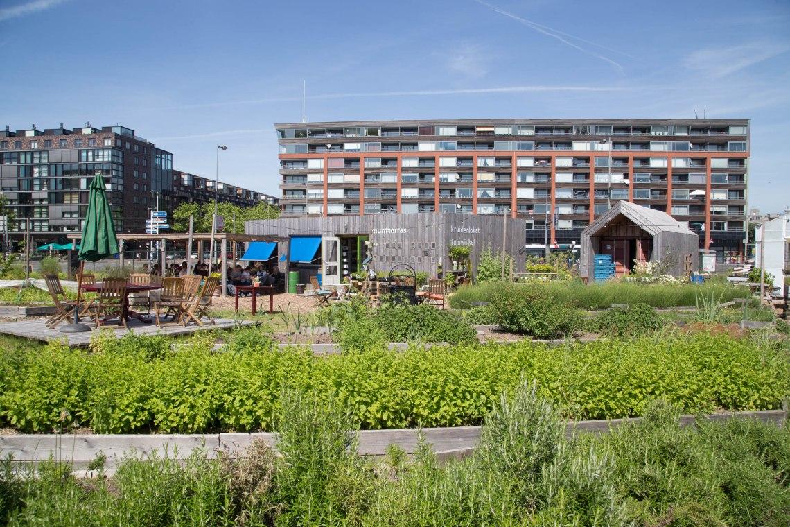 Rotterdamse munt - Groene avonturen-4