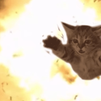 #MeowTheJewels: El-P auditions cats