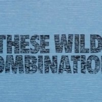 On Wax: These Wild Combinations comp from Dom Thomas