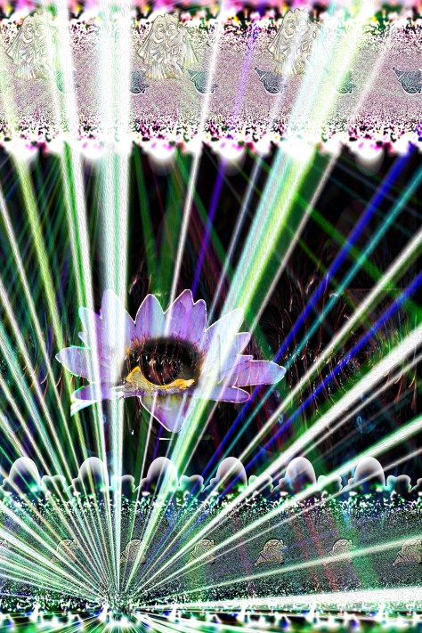 The Eye in the Lotus (R)