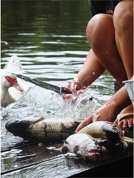 photographie-amazonie-indiens-indigenes-ayahusca-7