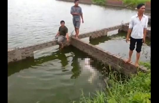 【閲覧注意】朝起きたらパジャマ姿の嫁が川に浮いていた・・・ 動画有り