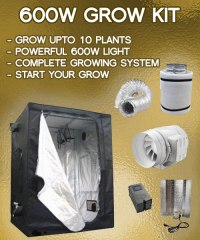 600w Grow Tent Kit - 5-12 Plant Indoor Grow Package