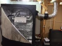 Led Grow Room. How To Set Up A Carbon Filter In A Grow ...