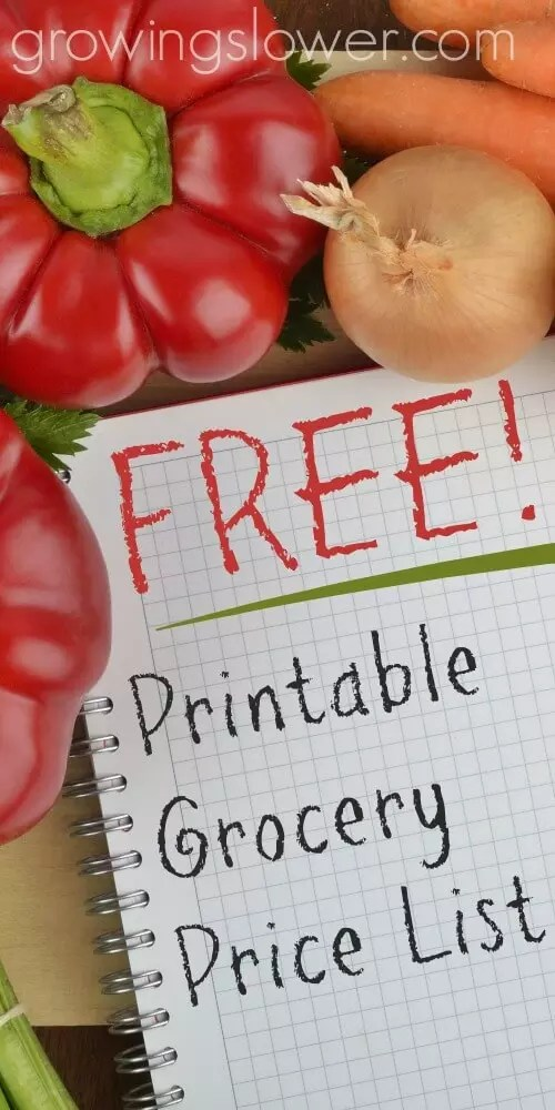 Grocery Price Book Printable - Save with a Grocery Price List - grocery price book template excel