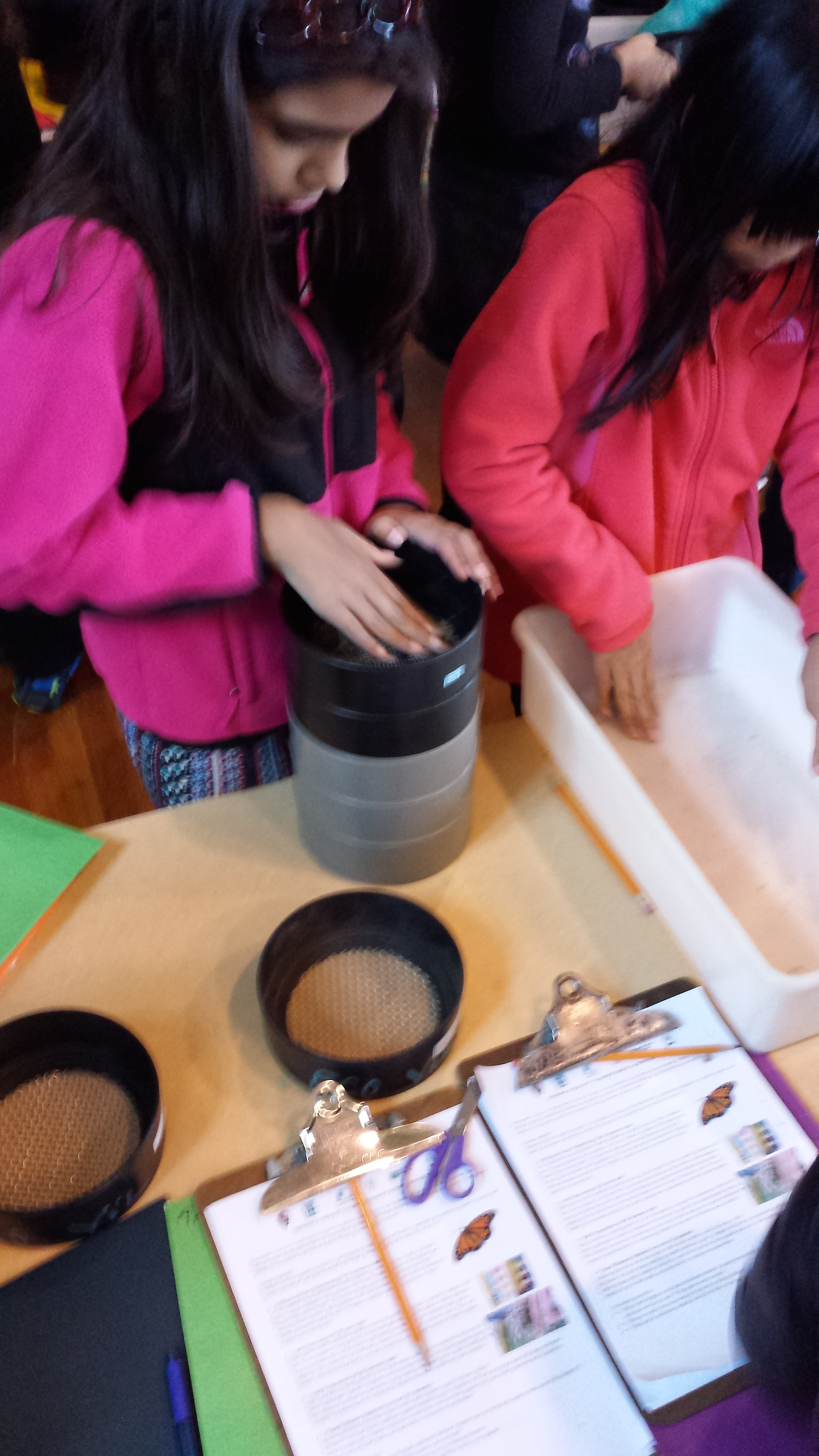 a20151016_Seed sieving_PS 197_grade 5