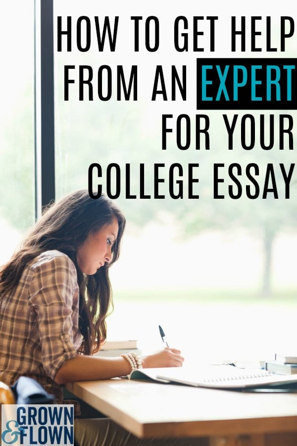 Need Expert Help For Your College Essay? Look No Further