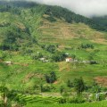 sapa valley hike, sapa valley trekking, trekking sapa, trekking in vietnam, trekking tours vietnam, sapa homestay, tavaan village homestay, hmong village sapa valley