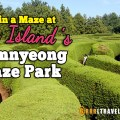 Jeju island gimnyeong maze park, jeju maze park, jeju island attractions, things to do on jeju island