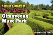 Jeju island gimnyeong maze park, jeju maze park, jeju island attractions, things to do on jeju island