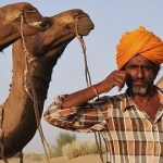 Video: Taking a Camel Safari in Jaisalmer