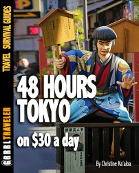 48-hours-japan-guide-budget