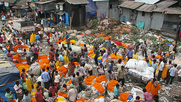 mullick ghat flower market, kolkata flower market, top attractions of kolkata, things to do in kolkata, kolkata city highlights