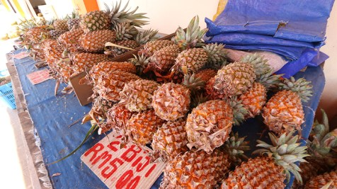 bornean pineapple, southeast asia pineapples