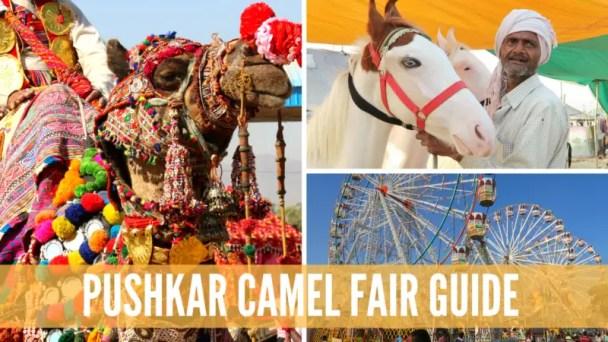 pushkar camel fair guide, guide to pushkar camel fair, pushkar camel fair, pushkar india, pushkar festival, camel festival india,
