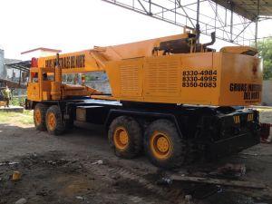 Grúas Hidráulica 65 tons