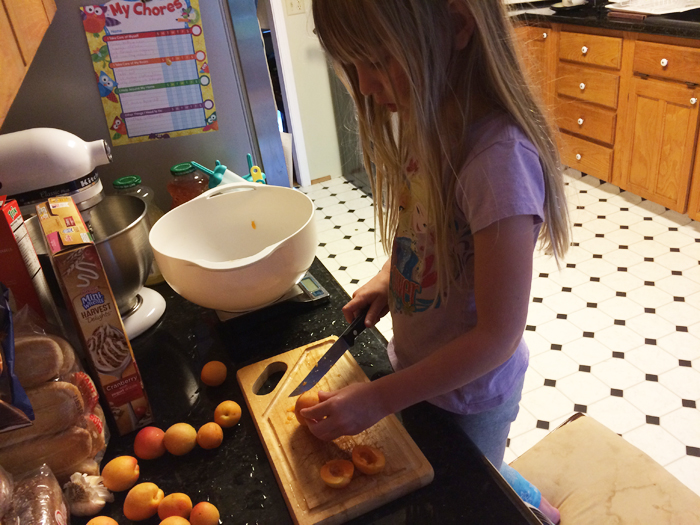 Removing the pits from the apricots.