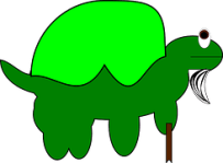 turtle-151639__180