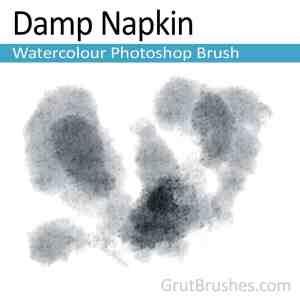 'Damp Napkin' Photoshop Watercolor Brush