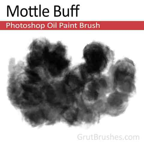 'Mottle Buff' Photoshop Oil Brush