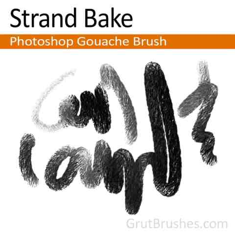 'Strand Bake' Photoshop Gouache Brush for digital artists