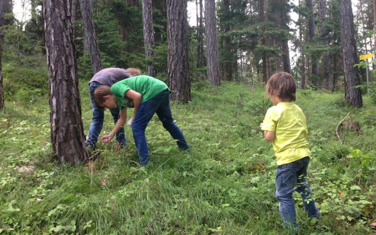 Kinder im Wald beim Spielen
