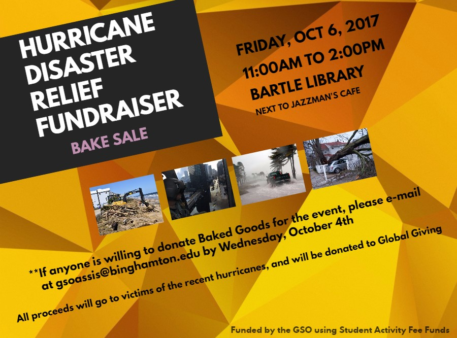 disaster relief flyer - Selomdigitalsite - disaster relief flyer