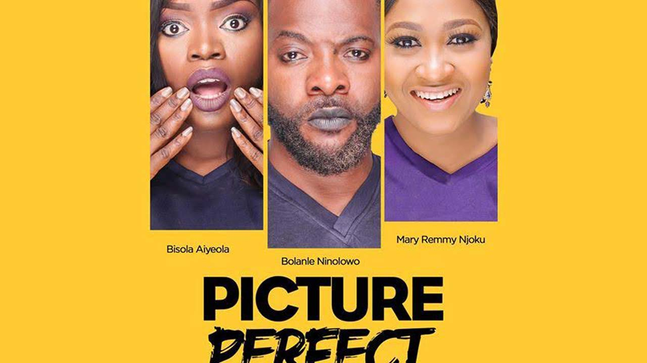 Picture Perfect Picture Perfect Set For Premiere The Guardian Nigeria News