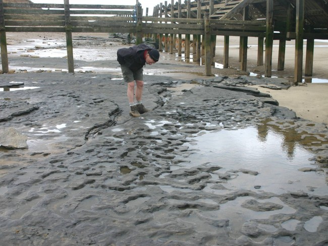 Ancient Footprints Found on British Beach May Be Oldest Outside of Africa