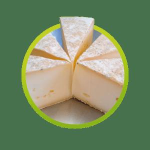 queso-artesanal-viejo-apote