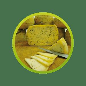 queso-oregano