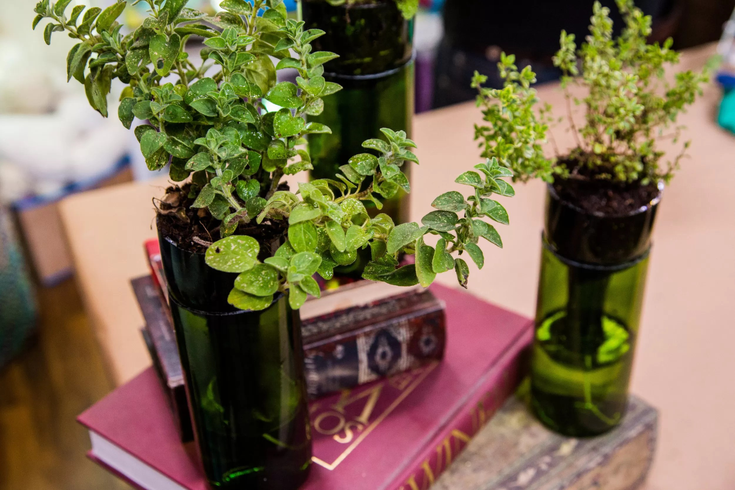 Make Self Watering Planters Wine Bottle Planter 12 Diy S Guide Patterns