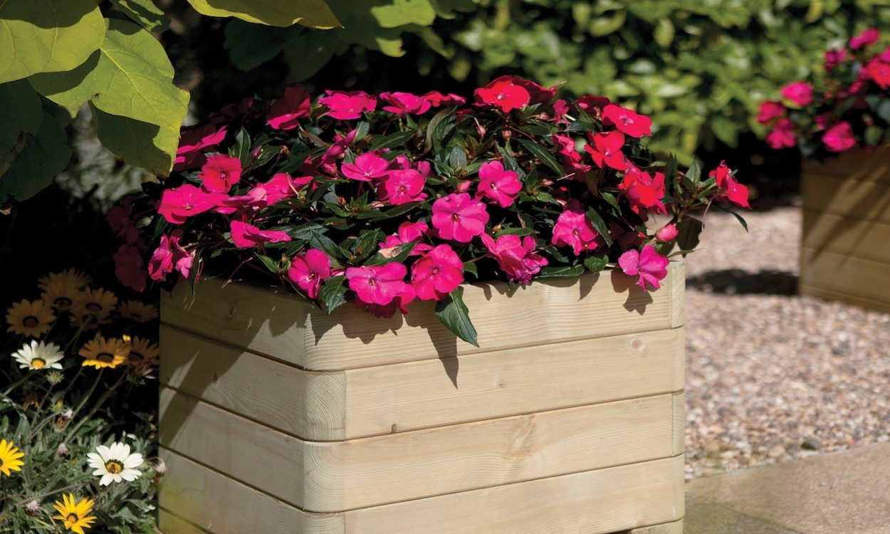 Outdoor Planters Near Me Best Flowers For Outdoor Planters Flower Shop Near Me