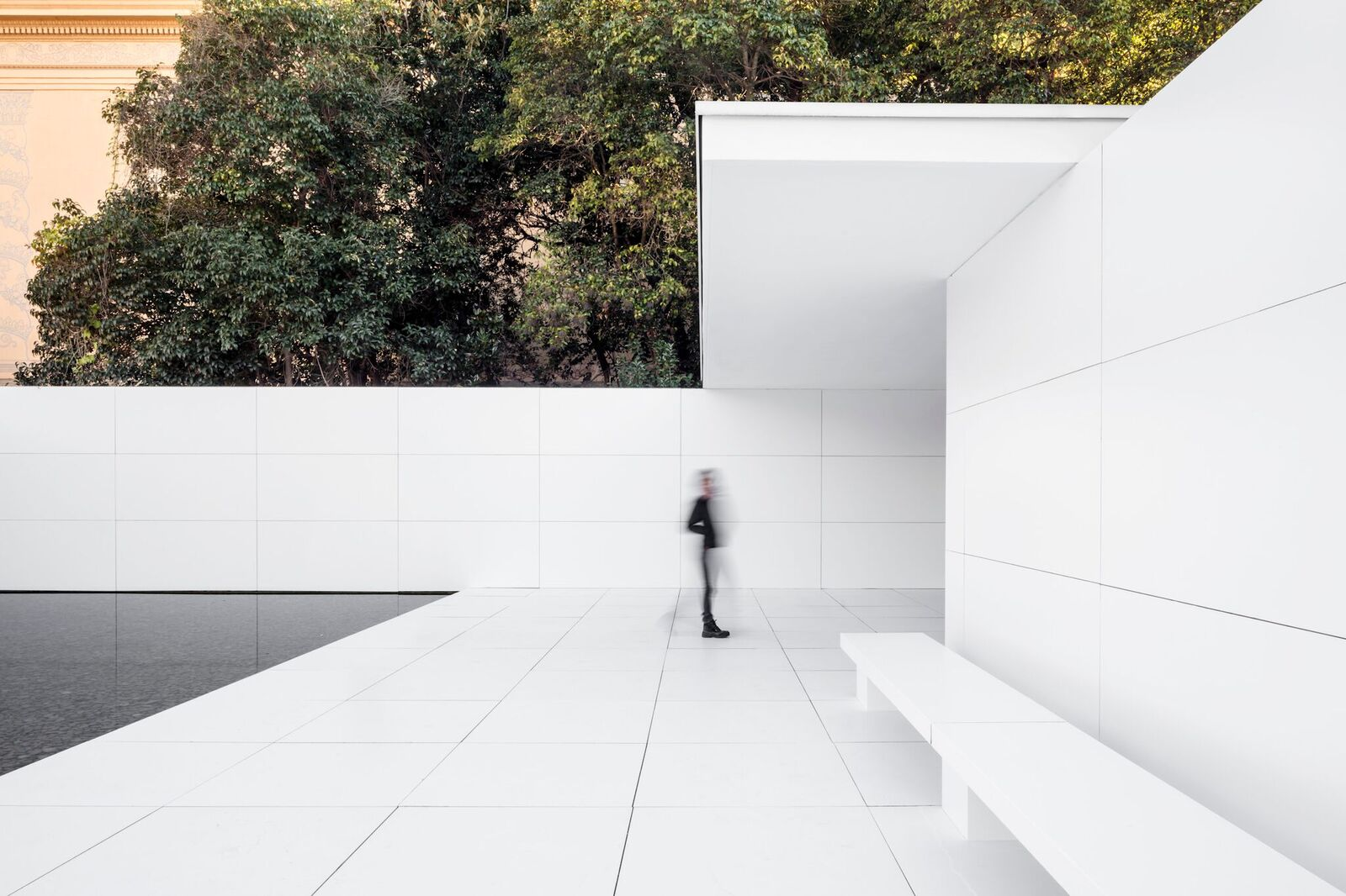 Barcelona Pavillon Mies Missing Materiality A Temporary Intervention At The