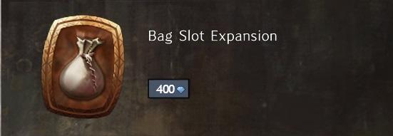 Guild wars 2 bag slot expansion per character