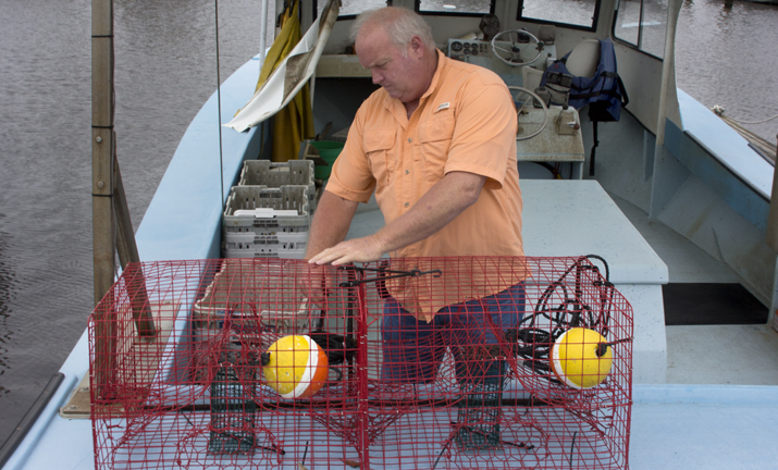 NOLA.com: Save Our Lake Director Concerned about Crab Numbers in Pontchartrain