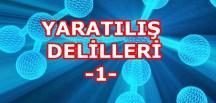 YARATILIŞ DELİLLERİ -1-