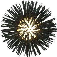 Wandleuchte Kokopelli Urchin Wall Lamp H1409 - 35x30x40 cm