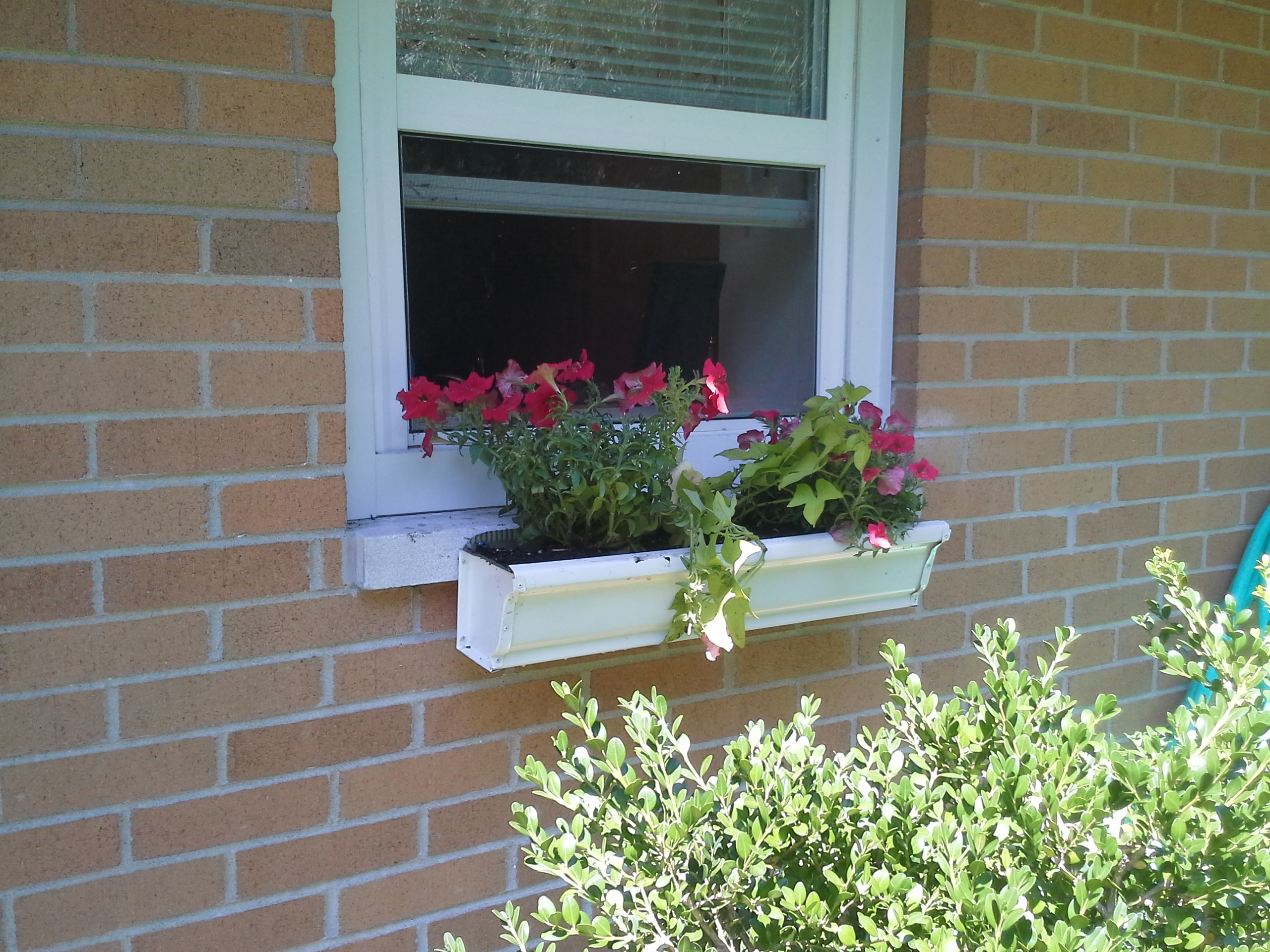 Concrete Window Box Planters Gardening Tips Archives Gutter Gardens