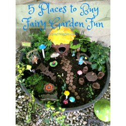 Startling Uk Places To Buy Fairy Garden Places To Buy Fairy Garden Gypsy Magpiegypsy Magpie Fairy Gardeness Fairy Gardens garden The Fairy Gardens
